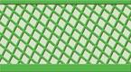 Green Waffle